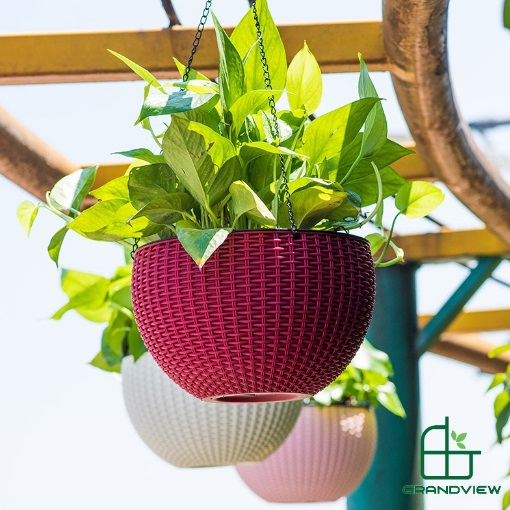 Chậu nhựa trồng cây CN02