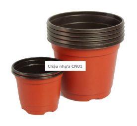 Chậu nhựa trồng cây CN01