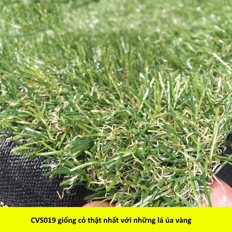 Chi tiết cỏ nhân tạo sân vườn CSV019