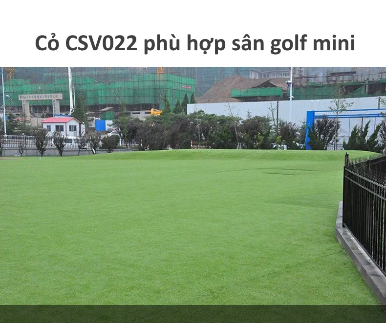 Cỏ nhân tạo CSV022 phù hợp làm sân golf mini